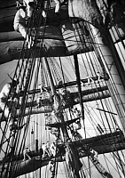 0233664 © Granger - Historical Picture ArchiveMILITARY.   Sail training ship 'Gorch Fock', Shipboys are setting the sails - Photographer: Curt Ullmann - Published by: 'Hier Berlin' 17/1938 Vintage property of ullstein bild.