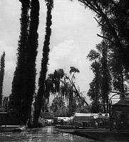 0236742 © Granger - Historical Picture ArchiveGEOGRAPHY.   Mexico - Mexiko - Xochimilco: floating gardens (Chinampas) near Mexiko-City - Photographer: Colin Ross - Published by: 'Die Dame' 25/1936 Vintage property of ullstein bild.