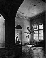 0239014 © Granger - Historical Picture ArchiveGEOGRAPHY.   Germany Potsdam: Palais Rietz of the countess of Lichtenau foyer - 1928.
