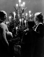 0241181 © Granger - Historical Picture ArchiveCELEBRATION.   Germany, family of four, father, mother, son and daughter standing in front of a Christmas tree - Photographer: Max Ehlert - 1938 Vintage property of ullstein bild.
