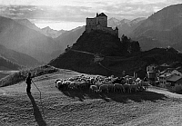 0241504 © Granger - Historical Picture ArchiveNATURE.   Switzerland, Grisons, Engadin, Alps: view of Tarasp Castle near Tarasp-Vulpera in the Lower Engadine, in the foreground a shepherd with his flock of sheep, date unknown, around 1930, photo by J. Feuerstein.