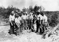 0242451 © Granger - Historical Picture ArchiveECONOMY.   Germany, Brandenburg, Fuerstenberg, cultivation of a pinewood by redundant workers, about 1914.