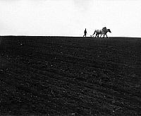 0242648 © Granger - Historical Picture ArchiveECONOMY.   Germany, Bavaria - Farmer harrowing with horses a field (Bavarian Forrest) - 1971.