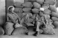 0121659 © Granger - Historical Picture ArchiveFARMERS, 1938.   Two farmers sitting on burlap sacks of rice at a mill in Abbeville, Louisiana. Photograph by Russell Lee, September 1938.