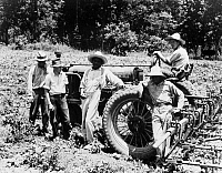 0123468 © Granger - Historical Picture ArchiveCOOPERATIVE FARMERS, 1937.   Former sharecroppers farming cotton on the Mississippi Delta Cooperative Farm in Hillhouse, Mississippi. Photograph by Dorothea Lange, June 1937.