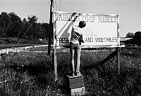 0172779 © Granger - Historical Picture ArchiveWEST VIRGINIA: MARKET SIGN.   An Americorps Vista volunteer paints a sign for a Farmers Co-op Market in West Virginia, 1972.