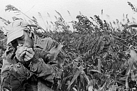 0131100 © Granger - Historical Picture ArchiveKANSAS: TOBACCO, 1938.   A man lighting a cigarette in a tobacco field in Coffey County, Kansas. Photograph by John Vachon, 1938.