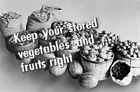 0323141 © Granger - Historical Picture ArchiveFSA SLIDE FILM, c1940.   'Keep your stored vegetables and fruits right.' Photograph by John Collier, from a Farm Security Administration slide film, c1940.