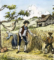 0067287 © Granger - Historical Picture ArchiveCOLONIAL FARMING.   A farmer and his family harvesting in 18th century colonial America. Wood engraving, 19th century.