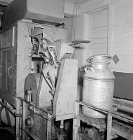 0324422 © Granger - Historical Picture ArchiveVERMONT: CREAMERY, 1941.   Milk cans on a conveyor belt leaving the washing machine at the United Farmers' Cooperative Creamery in Sheldon Springs, Vermont. Photograph by Jack Delano, 1941.