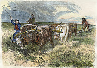 0009115 © Granger - Historical Picture ArchivePLOWING, 1868.   On the prairies beyond the Mississippi. Wood engraving, American, 1868.