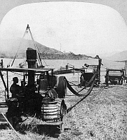 0004272 © Granger - Historical Picture ArchiveCALIFORNIA: FARMING, 1905.   A steam thresher with self-feeder, stacker and bagging attachment. Photographed in 1905.