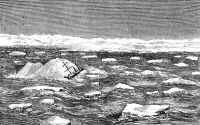 0054869 © Granger - Historical Picture ArchiveCHARLES FRANCIS HALL  (1821-1871). American explorer. Captain Hall's ship 'Polaris' at peril in the Arctic, 21 November 1871. Wood engraving, American, 1873.