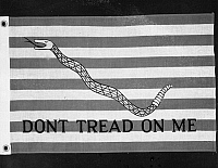 0064583 © Granger - Historical Picture ArchiveFLAGS: DON'T TREAD ON ME.   American flag, First Navy Jack, 1775.
