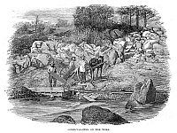 0268573 © Granger - Historical Picture ArchiveCALIFORNIA: GOLD MINERS.   Gold miners washing gold in the Yuba River in California. Wood engraving, English, 1853.