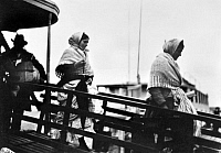 0117593 © Granger - Historical Picture ArchiveELLIS ISLAND: IMMIGRANTS.   Immigrants walking down the gangplank from a ferry boat at Ellis Island, New York City. Photographed by Lewis Hine, 1905.