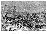 0266465 © Granger - Historical Picture ArchiveJOHNSTOWN FLOOD, 1889.   'Corpse-collectors at work in the rain.' Engraving, 1889.