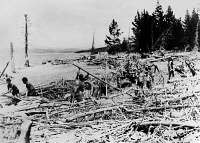 0170392 © Granger - Historical Picture ArchiveNEW DEAL: C.C.C., 1933.   Civilian Conservation Corps workers from New York City, clearing dead timber from the shore of Lake Jackson in Wyoming. Photograph, September 1933.