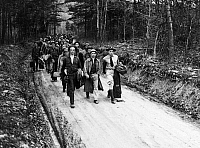 0171184 © Granger - Historical Picture ArchiveNEW DEAL: C.C.C., 1933.   One of the first units of Civilian Conservation Corps recruits entering a section of George Washington National Forest near Luray, Virginia, to begin a reforestation project, 18 April 1933.