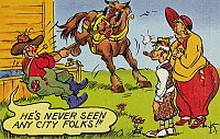 0097175 © Granger - Historical Picture ArchiveAMERICAN POSTCARD, c1950.   'He's never seen any city folks!'