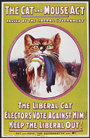 0100385 © Granger - Historical Picture ArchivePOSTER: WOMEN'S RIGHTS.   'The Cat and Mouse Act.' Poster produced by a British women's rights group criticizing the Prisoners' Temporary Discharge for Ill-Health Bill, a law designed to thwart hunger-strikers, passed by the Liberal Party government, 1913.