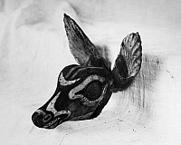 0174452 © Granger - Historical Picture ArchiveCALUSA FIGUREHEAD.   Carved wooden deer figurehead of the Calusa Native Americans, possibly worn as a mask, c800-1400 A.D., excavated at Key Marco, Florida, by Frank Hamilton Cushing in 1896.
