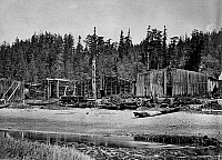 0173041 © Granger - Historical Picture ArchiveKWAKIUTL VILLAGE, 1881.   A view of a Southern Kwakiutl village on the Salmon River, on Vancouver Island, British Columbia, Canada. Photographed by Edward Dossetter, 1881.