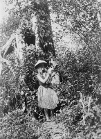 0408354 © Granger - Historical Picture ArchiveQUINAULT WOMAN, c1913.   Quinault woman picking berries in the Pacific Northwest. Photograph by Edward S. Curtis, c1913.