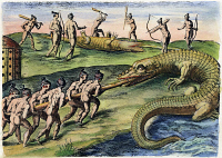 0009679 © Granger - Historical Picture ArchiveNATIVE AMERICANS: CROCODILES, 1591.   Florida Native Americans killing crocodiles (alligators). Engraving, 1591, by Theodor de Bry after a now lost drawing by Jacques Le Moyne de Morgues.