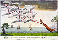 0133623 © Granger - Historical Picture ArchiveCHARLES FOX: CARTOON, 1782.   'The Habeas Corpus, or The Wild Geese flying away with Fox to America.' English cartoon depicting seven geese wrapped with ribbon and carrying a fox, representing Charles James Fox, over the Atlantic Ocean to America, 1782.
