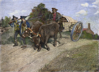 0070788 © Granger - Historical Picture ArchiveNEW HAMPSHIRE MINUTEMEN.   Minutemen on their way to Boston to take part in the Battle of Bunker Hill, June 1775, bringing with them a wagonload of gunpowder seized from Fort William and Mary at Portsmouth six months earlier: wood engraving, 1886, after Howard Pyle.