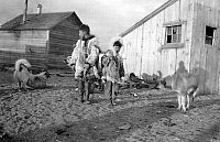 0121135 © Granger - Historical Picture ArchiveALASKA: ESKIMOS.   Two young Eskimo boys with their dogs in Nome, Alaska. Photograph, early 20th century.