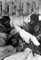 0121970 © Granger - Historical Picture ArchiveALASKA: FUR TRADERS.   A company trader buying white fox furs and other skins from an Eskimo at a Revillon Freres (Revillon Brothers) fur-trading post, Canada. Photograph, early 20th century.