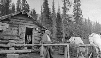 0124347 © Granger - Historical Picture ArchiveALASKA: LOG CABIN.   A man standing in front of a log cabin in Alaska. Photograph, 1900-1916.