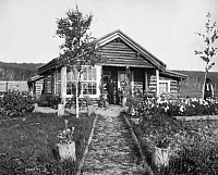0124393 © Granger - Historical Picture ArchiveALASKA: LOG CABIN, c1916.   A man standing in front of his log cabin with a flower garden in the front yard on a ranch in Fairbanks, Alaska. Photograph, c1916.