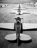 0623009 © Granger - Historical Picture ArchiveMILITARY AIRCRAFT, c1947.   Rows of American fighter aircraft on a tarmac. Photograph, c1947.