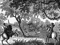 0054755 © Granger - Historical Picture ArchiveRUNAWAY SLAVE HUNT, c1860.   'Shooting Scene.' A group of mounted pursuers and their hounds have treed a runaway slave in the American south. Wood engraving, c1860.