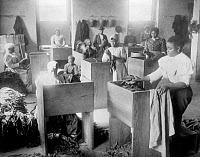 0621270 © Granger - Historical Picture ArchiveTOBACCO WAREHOUSE, c1899.   African Americans sorting tobacco at a warehouse at the T.C. Williams and Co. in Richmond, Virginia. Photograph, c1899.