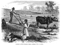 0038724 © Granger - Historical Picture ArchiveSHARECROPPER, 1866.   'Plowing in South Carolina.' Wood engraving, American, 1866.