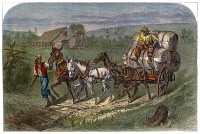 0030417 © Granger - Historical Picture ArchiveHAULING COTTON, 1866.   North Carolina field hands hauling a load of cotton. Wood engraving, American, 1866.