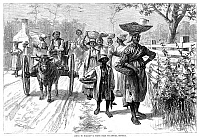 0048744 © Granger - Historical Picture ArchiveGEORGIA: MARKET, 1875.   'Going to market - a scene near Savannah, Georgia.' Wood engraving, American, 1875, after Edwin Austin Abbey.