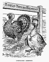 0115513 © Granger - Historical Picture ArchiveTURKISH DIPLOMACY, 1939.   'Unwelcome Addresses.' A Nazi German duck attempts to woo Turkey in an English cartoon by Bernard Partridge from 'Punch,' 1939, commenting on the Turkish government's susceptibility to pressures to remain effectively neutral in World War II, notwithstanding its formal alliance with Britain and France. RESTRICTED OUTSIDE US.