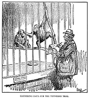 0013076 © Granger - Historical Picture ArchiveSCOPES TRIAL CARTOON, 1925.   'Gathering Data for the Tennessee [Scopes] Trial': American cartoon, 1925, by Rollin Kirby suggesting a possible research method for William Jennings Bryan, prosecuting attorney in the case against John Scopes, the high school biology teacher charged with violating state law by teaching evolution in a public school.