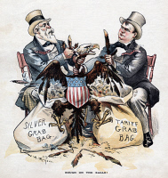 0350238 © Granger - Historical Picture ArchiveFREE SILVER CARTOON, 1893.   Cartoon by W.A. Rogers depicting William M. Steward (left) and William McKinley plucking a bald eagle to stuff bags labeled 'Silver Grab Bag' and 'Tariff Grab Bag.' Chromolithograph from Puck, 23 August 1893.