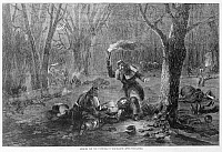 0173332 © Granger - Historical Picture ArchiveCIVIL WAR: WOUNDED.   Searching for the wounded by torchlight after the Battle of Fort Donelson in 1862 during the Civil War. Woodcut.