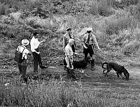 0093398 © Granger - Historical Picture ArchiveMANHUNT.   Police and bloodhounds looking for a man who is wanted by the F.B.I.
