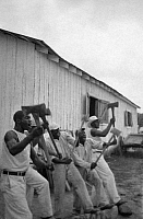 0118943 © Granger - Historical Picture ArchiveTEXAS: PRISONERS, 1934.   'Lightnin' Washington, an African American prisoner, singing with his group while chopping wood in a labor prison at Darrington State Farm, Texas. Photograph by Alan Lomax in April 1934.
