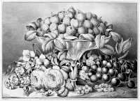 0623201 © Granger - Historical Picture ArchiveSTILL LIFE, c1863.   'Fruit and Flower Piece.' Engraving by Frances F. Palmer for Currier & Ives, c1863.
