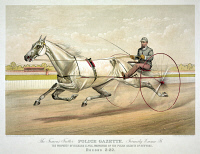 0622993 © Granger - Historical Picture ArchiveHORSE RACING, c1882.   'Famous Trotter Police Gazette Formerly Emma B: The Property of Richard K. Fox, Proprietor of the Police Gazette of New York.' Engraving by Currier & Ives, c1882.