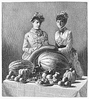 0090813 © Granger - Historical Picture ArchiveKENTUCKY: FAIR, c1889.   Women presenting fruits and vegetables at a Kentucky fair. Line engraving, 1889.